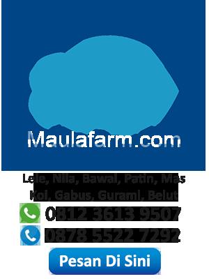 MaulaFarm.com